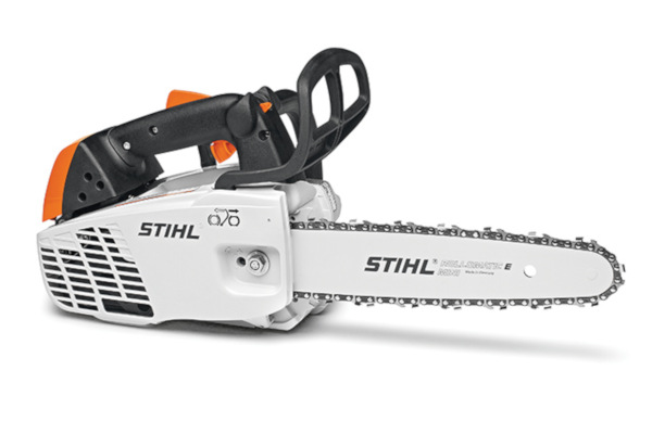 Stihl MS 194 T for sale at Carroll's Service Center